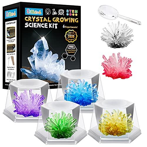 Sillbird Kristalle Züchten Experimentierset , 6 Farben Kristalle Experimentierkasten Wissenschaftler Spielzeug für Kinder Geschenke Jungen Mädchen ab 5 6 8 10 12 Jahre