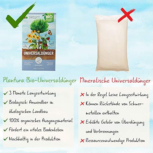 Plantura Bio Universaldünger mit 3 Monaten Langzeitwirkung, Pflanzendünger, für kraftvolle Pflanzen, 100% tierfrei & Bio, gut für den Boden, unbedenklich für Hund, Haus- & Gartentiere, Naturdünger - 3