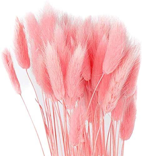Soulitem Secchi Bouquet di Fiori Artificiale Lagurus Ovatus Decorazione per Casa Albergo Matrimonio Decorazione - Rosa Chiaro