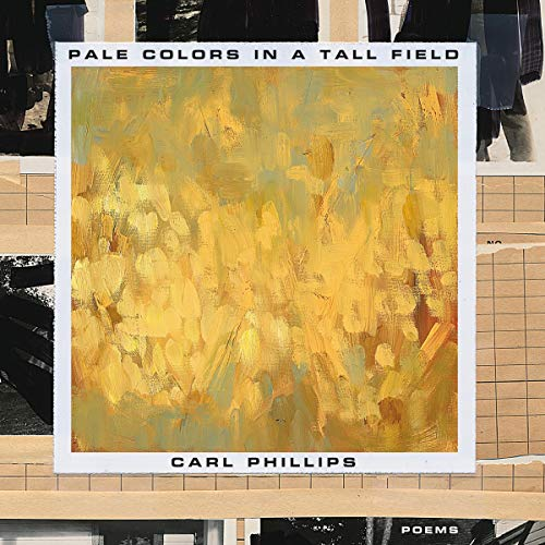 Pale Colors in a Tall Field cover art