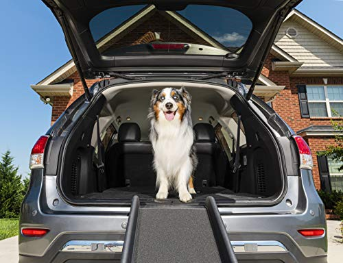 PetSafe Solvit ultraleichte faltbare Hunderampe, Anti- Rutsch Autorampe, für Hunde und Katzen