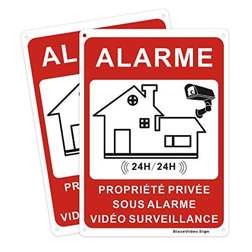 BlazeVideo 2X Aluminium Panneau - Propriété Privée sous Vidéo Surveillance 24h/24h Aluminium, 180 * 250mm