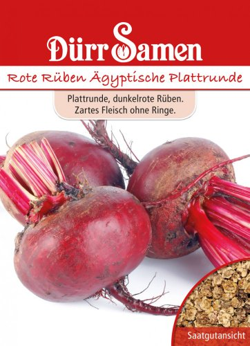 Dürr Samen 0056 Rote Rübe Ägyptische Plattrunde (Rübensamen)