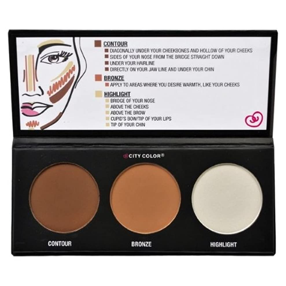 豊かな聡明征服するCITY COLOR Contour Effects - Contour/Blush/Highlight (並行輸入品)