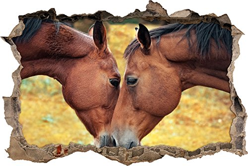 zwei schmusende Pferde Wanddurchbruch im 3D-Look, Wand- oder Türaufkleber Format: 62x42cm, Wandsticker, Wandtattoo, Wanddekoration