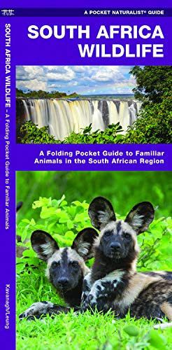 South Africa Wildlife: A Folding Pocket Guide to Familiar Animals in the South African Region (Pocket Naturalist Guides)