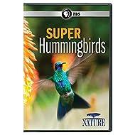 NATURE: Super Hummingbirds DVD