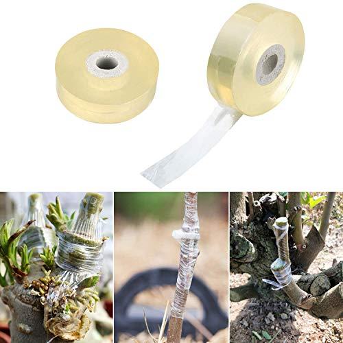 ANCIRS, Nastro Adesivo per innesto da 20 mm di Larghezza, biodegradabile, Pellicola Elastica Trasparente per Fiori