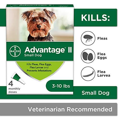 Flea and Lice Treatment for Dogs, 3-10 lb, 4 doses, Advantage II