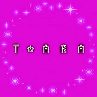 T-ARA カレンダー2013年
