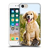 Head Case Designs Golden Retriever Puppy Popular Dog Breeds Hard Back Case Compatible with Apple iPhone 7 / iPhone 8 / iPhone SE 2020