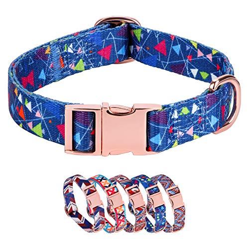Rhea Rose Premium Hundehalsband, Metallverschluss, rotgoldene Schnalle, verstellbar, strapazierfähig, Haustier-Halsbänder für Hunde und Katzen, Blau, L