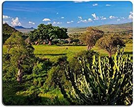 17P01258 Mousepads Grassland with Rich Flora Savanna and Bush Landscape in Africa Tsavo West Kenya Mat Customized Desktop Laptop Gaming Mouse Pad