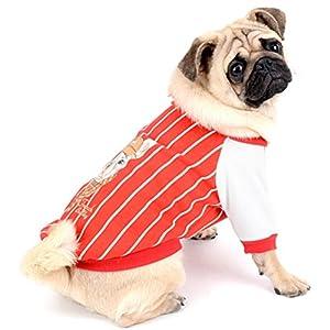 Zunea Pullover Manteau Rayé Doux à Chaud Hiver pour Femme avec Motif Bouledogue Français Protège-poitrail Pet Vêtements Vêtements pour Chiens Bulldogs Pitbulls Bull Terrier
