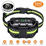 Best Anti Bark Collars - Flittor Bark Collar, No Bark Collar Rechargeable Review
