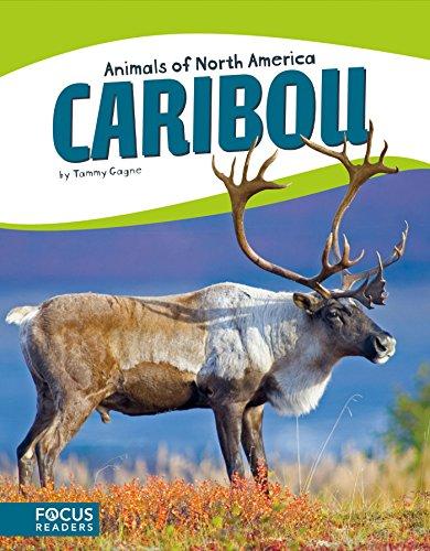 Caribou (Animals of North America (Set of 8)) (English Edition)