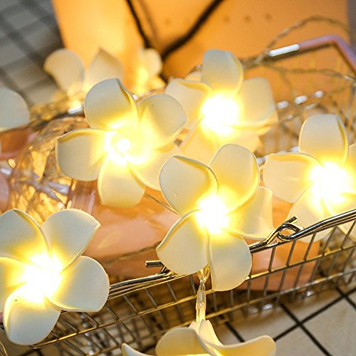 URIBAKY 5/10/20/40LED String Lights,Tree Decoration String Lights,Christmas Lights for Party Indoor Outdoor Decorative Lighting for Home,Garden,Patio,Yard,Christmas