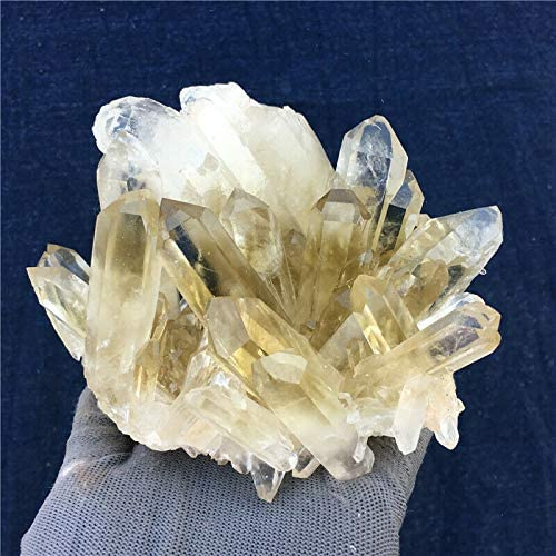 2.22lb Natural Smokey Ranking TOP5 Citrine Quartz Cluster All stores are sold Mineral Cr Specimen