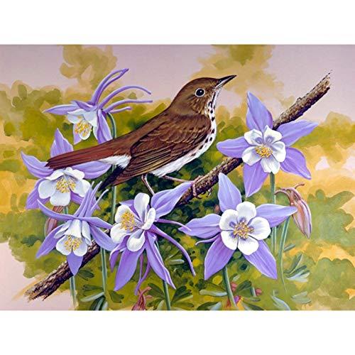 UOOOOF Pintura de Bricolaje por números, Kit de Pintura al óleo sobre Lienzo para niños y Adultos, Dibujo de Pintura con Pinceles, sin Marco--Pájaro Rama