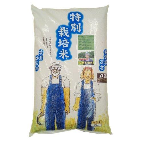 31年産新米 北海道産 農薬化学肥料不使用ゆきひかり 玄米10kg 【数量限定品】