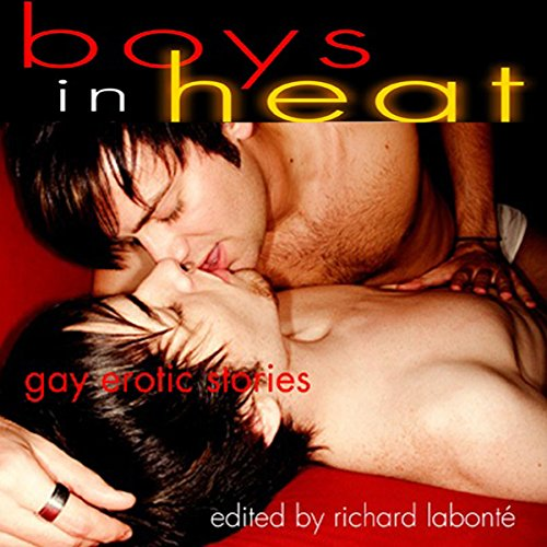 Boys in Heat cover art