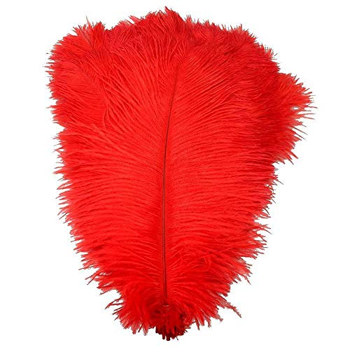 Plumas Decoracion, 10 unids/Lote Plumas de Avestruz roja teñida Natural para artesanías Accesorios de Carnaval Avestruz Decoración de Plumas Accesorios de Boda Decoración (Color : 15CM TO 20CM)
