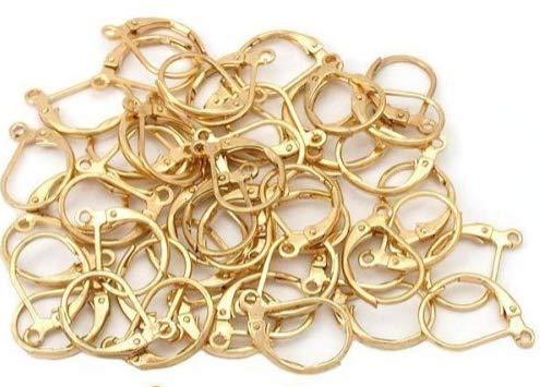 VNDEFUL 50 Pcs Stainless Steel Lever Back Hoop Earrings Earwire Findings, Gold 10x15mm