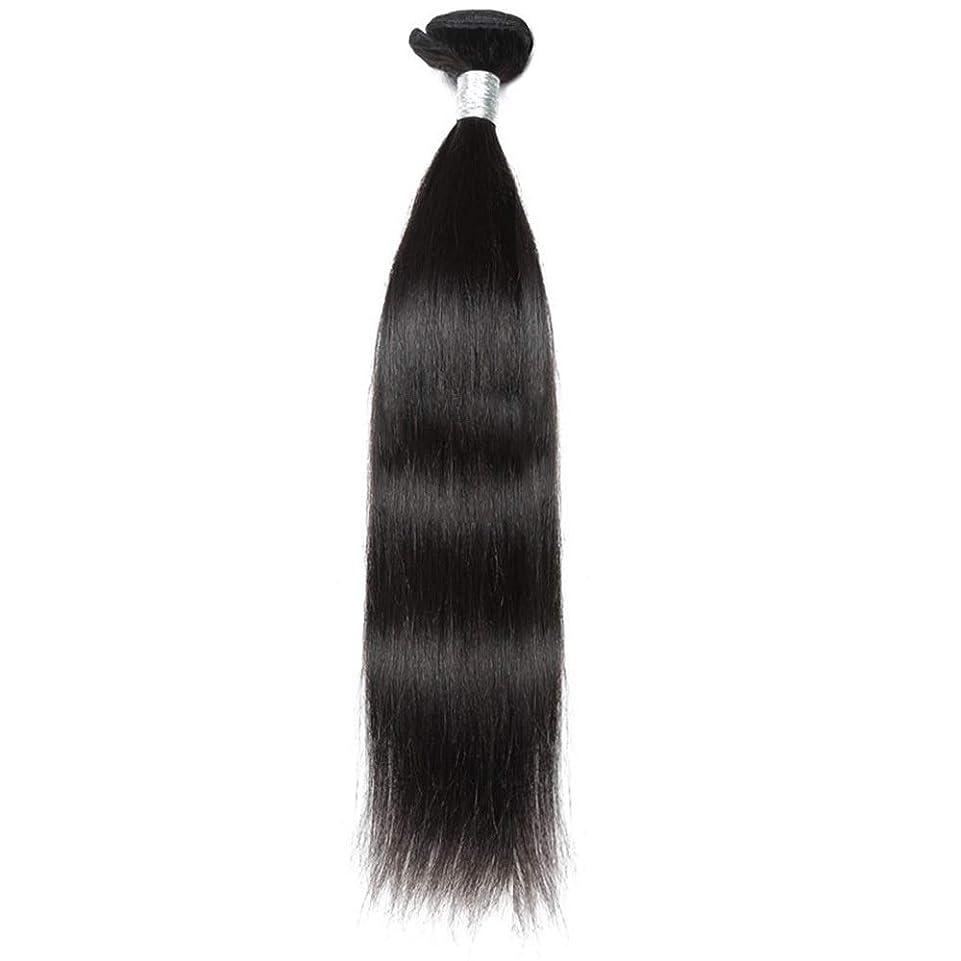 犠牲に負ける傾いたHOHYLLYA ブラジルのバージンヘア9Aグレード絹のようなストレート人間の髪の毛の織り方1バンドルナチュラルカラーヘアエクステンション(10インチ-26インチ)合成髪レースかつらロールプレイングウィッグストレートシリンダーショートスタイル女性自然 (色 : 黒, サイズ : 26 inch)