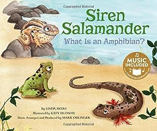 Siren Salamander: What Is an Amphibian?