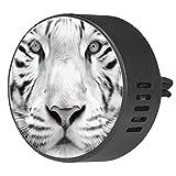 BestIdeas 2 clips de ventilación de coche ambientador con e