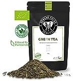 Edward Fields - Té Verde Orgánico de alta calidad. Cantidad: 100g. Formato: Granel. Origen: China. Detox, antioxidante, adelgazante.