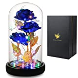 Girlfriend Gifts, Beauty and The Beast Rose 24K Blue Rose in Glass Dome with Fairy String Light, Enchanted Blue Rose, Light Up Rose Gift for Her on Valentines Day Wedding Anniversary Birthday