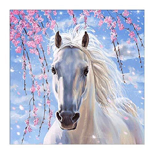 Sunnay Diamond Painting Kits,paard Crystal 5d Diamond Art by Nummers voor volwassenen beginners, geen volledige drill, ronde kralen, 25 x 25 cm