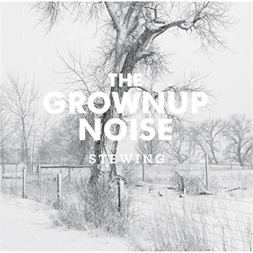 The Grownup Noise