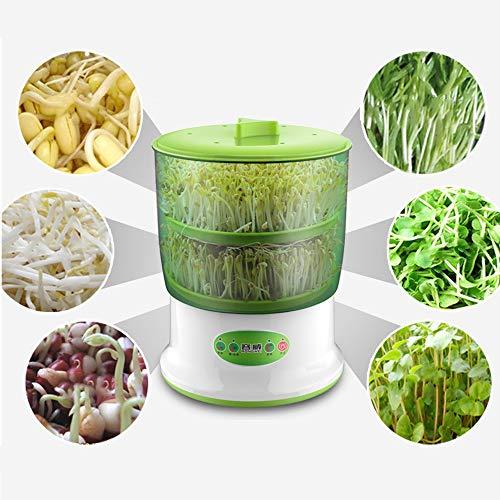Graine automatique à double couche, machine de germination de fruits et légumes, cultivateur de germes de soja de grande capacité