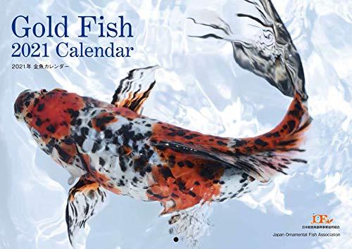 Gold Fish 金魚カレンダー 2021 ([カレンダー])