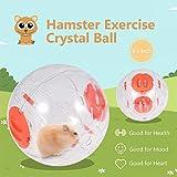 Weehey Bola para Ejercicios de hámster Bola de Cristal para hámsters, 6,3 Pulgadas, Bola de Correr de hámster Transparente