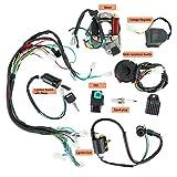 YaeGarden Complete Electrics Stator Coil CDI Wiring Harness Kit CDI Wire Assembly for 4 Stroke ATV KLX 50cc 70cc 110cc 125cc Quad Bike Buggy Go Kart