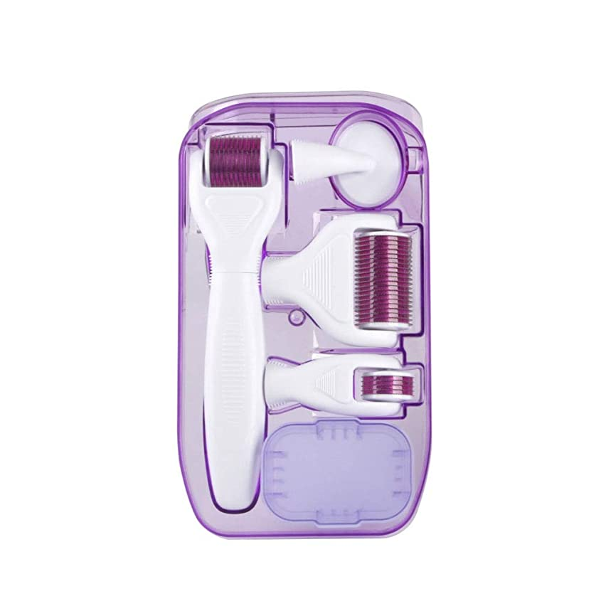 スポンジ失速獲物ダーマローラー 美容針 6-IN-1キット美顔ローラー鍼 チタン0.25/ 0.3 / 0.3ミリメートルマイクロニード マッサージ ツール ル皮膚再生、アンチエイジング 血行を促進して肌のハリを高めます 充電不要