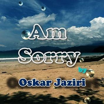 Am Sorry - Single