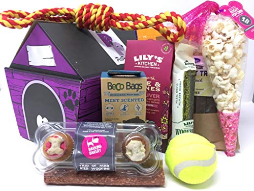 Pet Presents Treat Hamper for Small Dog