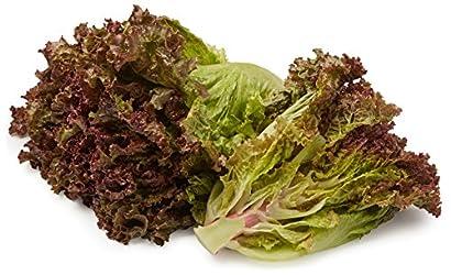Organic Red Leaf Lettuce, One Head