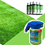 Dr.Cheol Liquid Lawn,Hydro Mousse Pelouse Gazon,Pulvérisateur de Semences Innovant Gazon-(Pas de Graines) (1 Spray Bottle & 5 Lawn Booster)