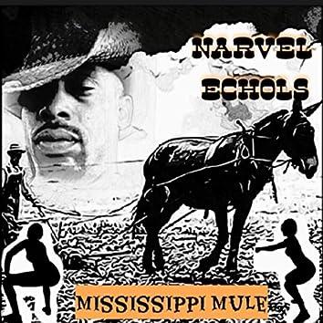 Mississippi Mule