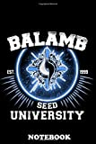 Notebook: Balamb University , Journal for Writing, College Ruled Size 6' x 9', 110 Pages