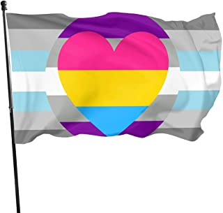 MINIOZE Demiboy Gray Ace Panromantic Asexual Pan Pride Flag Themed Welcome Party Outdoor Outside Decorations Ornament Picks Home House Garden Yard Decor 3 X 5 Ft Small Flag