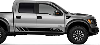 Bubbles Designs 2X Decal Sticker Graphic Side Stripes Compatible with Ford F-Series Raptor 2009-2017