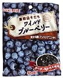 正栄 ワイルドブルーベリー 45g