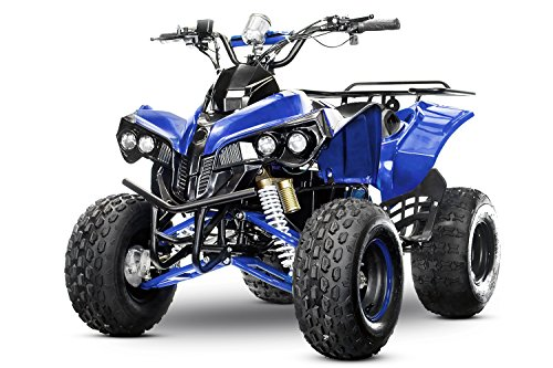 "XXL Eco Warrior 8"" 1000W 48V Quad Elektroquad Midiquad Atv Kinderquad Midi (Blau)"