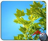 ZMvise青い空と緑の葉の背景ファッション漫画マウスパッドマットカスタム四角形ゲームマウスパッド